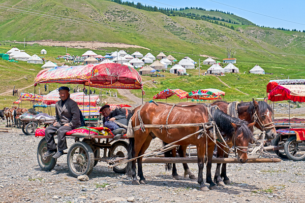 Horse-pulled wagon, West White Poplar Gully (Xinjiang)