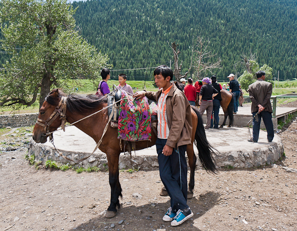 Horse rides (West White Poplar Gully, Xinjiang)